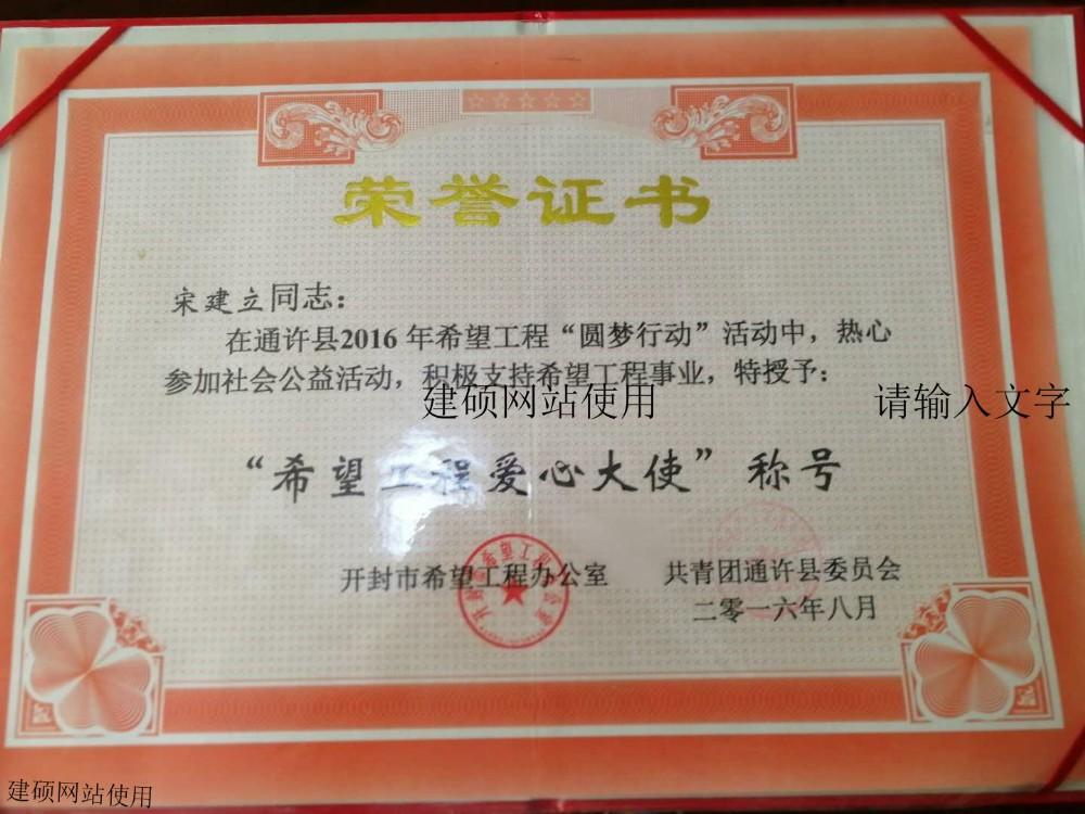 希望工程爱心大使荣誉证书